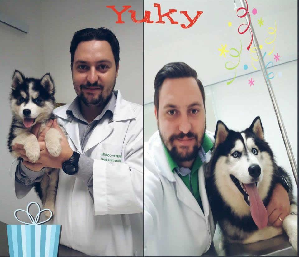 SOS Animal Clínica Veterinária / Araras-SP